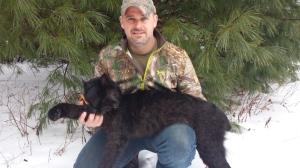 Black Bobcat